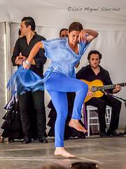 _46X6557 (luismisax) Tags: cadiz sarabaras canonef70200f4lisusm canon1dmarkiii elbaluarte bluefincook flamencodancingtour