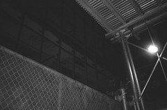43610029 (kyrieelizabeth) Tags: nyc streetphotography staybrokeshootfilm 35mm olympusxa film filmisnotdead noiretblanc newyorkcity brooklyn blackwhite blackandwhite