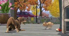 Sims 3 Pets 38