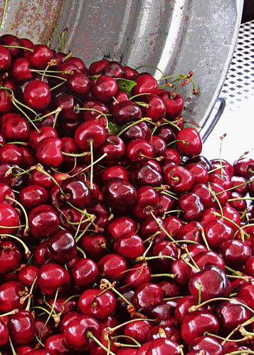 6-30-11 A Bucket of Cherries by roswellsgirl
