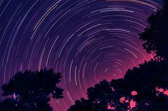 Dream (Moniza*) Tags: longexposure blue sunset sky nature night clouds sunrise landscape star twilight nikon trails trail bluehour celestial startrails polaris northstar startrail d90 moniza