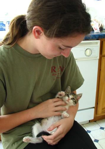 Amy, the kitten