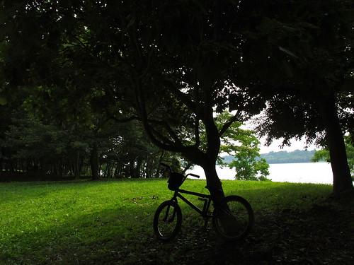 110703 浜松 佐鳴湖