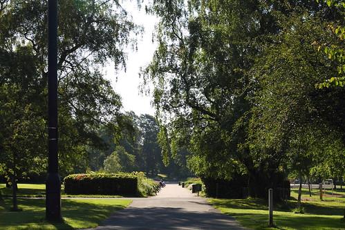 Kelvingrove Park 390