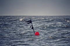 (robef) Tags: ocean sea water fishing waves flag north crab lobster buoy lobsterpot buoyant