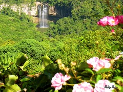 Cascata dos Amores (Rohdrygo) Tags: park flowers parque trees brazil green nature water rio brasil river landscape waterfall agua scenery rocks exposure place fiume natura paisagem shutter brazilian fujifilm bento acqua cascade cachoeira paesaggi riograndedosul lugar brasile pedras amores exposio cascata rochas queda gonalves landascapes obturador