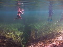 Blue Spring spring (TimoOK) Tags: florida unitedstates statepark spring lhde vesi water