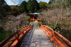 Daigoji (Michael.Nutt1) Tags: nikon d7100 japan kyoto red bridge temple trees pond water tradition culture travel tourist
