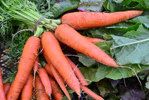 Fat Carrots