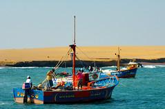 Playa Lagunillas, Paracas, Peru (redux) (Martintoy) Tags: peru pelicans nikon d2x playa nikkor pisco paracas reservanacional lagunillas playalagunillas