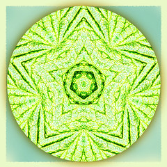 house of stars (SueO'Kieffe) Tags: nature digital photoshop mandala spirituality