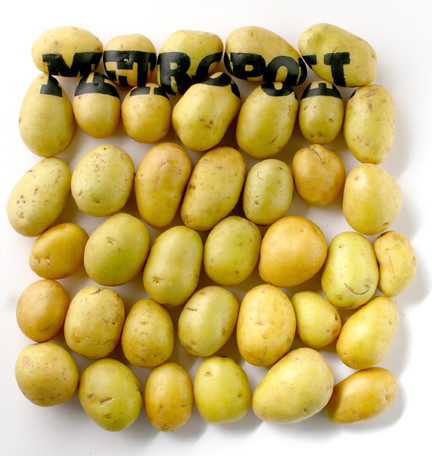 modelo patata 2