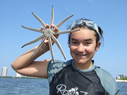 Julia finds a starfish