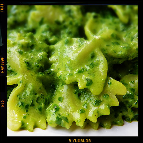 farfalle with spinach, basil and ricotta sauce