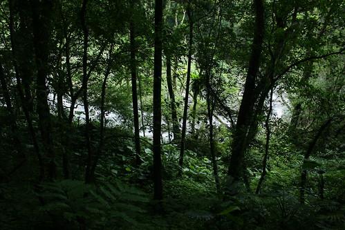 新北市三峽雲森瀑布_17_2011.06.28