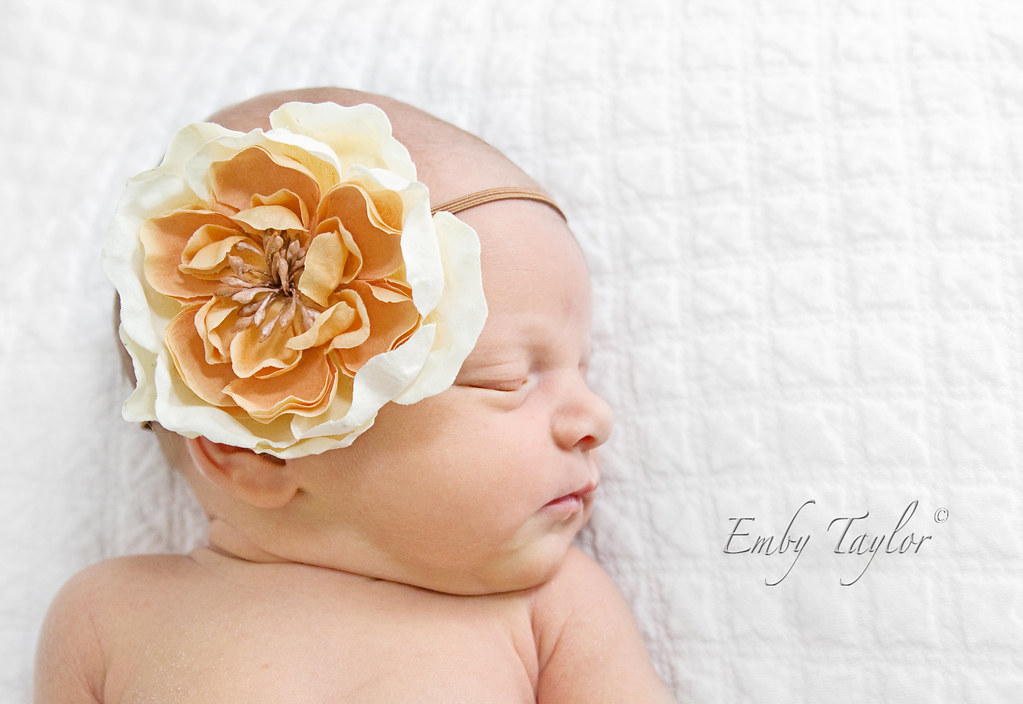 Miss E Miss E best Kannapolis Charlotte NC Photographer newborn childrens maternity photography by Emby Taylor Photography, on Flickr