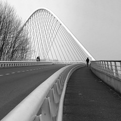the curvy suspension bridge (mujepa) Tags: bridge bw monochrome lines silhouette architecture belgium belgique curves nb pont liege suspensionbridge guillemins pontsuspendu mygearandme dblringexcellence tplringexcellence photographyforrecreation eltringexcellence rememberthatmomentlevel4 rememberthatmomentlevel1 rememberthatmomentlevel2 rememberthatmomentlevel3 rememberthatmomentlevel5 rememberthatmomentlevel6