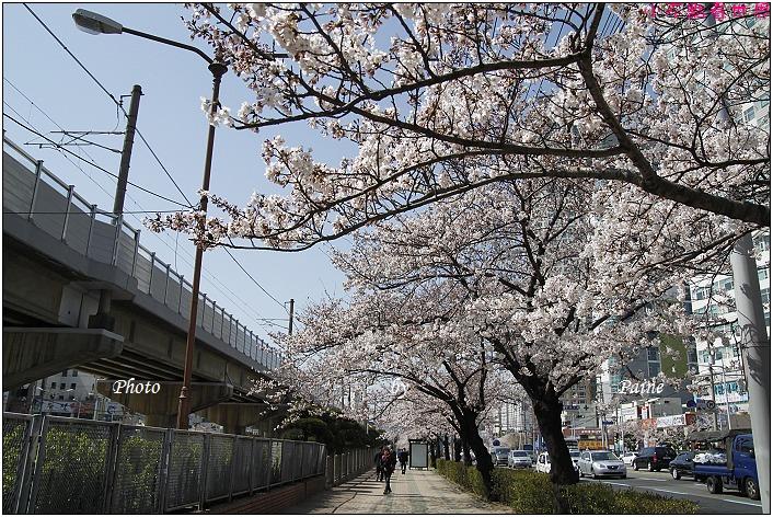 釜山溫泉站 (6).JPG