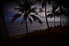 24/52 - Within a mile (iPlaid34 (sooooo busy - catching up soon!)) Tags: ocean longexposure trees water rain night clouds palms evening waves florida balcony ships steps palmtrees lightning railing fronds bannister 2012 week24 intervals withinamile week24theme 522012 52weeksthe2012edition weekofjune10