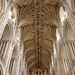 """Norwich Cathedral • <a style=""""font-size:0.8em;"""" href=""""http://www.flickr.com/photos/76223813@N06/7400989208/"""" target=""""_blank"""">View on Flickr</a>"""