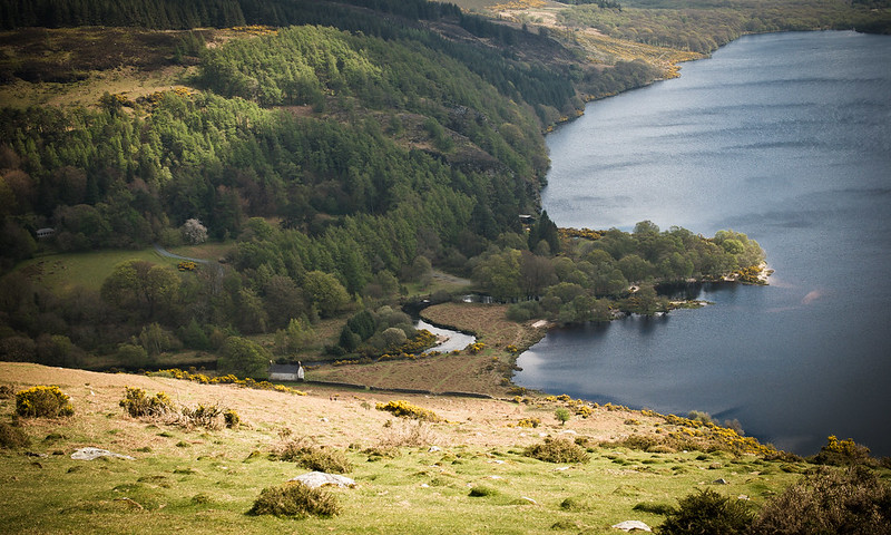 Irlandia, Wicklow National Park, Lough Dan