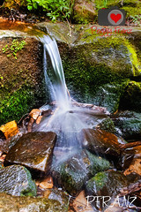 Pickle Springs (Photography by Peggy Franz FranzsFeaturedFotos) Tags: park flowers nature landscape photography waterfall spring colorful parks missouri waterfalls lillypads naturephotography mdc landscapephotography stonesrocks missouriconservation shawsnaturereserve missouriart mdconline pondsshawsnaturereserve picklespringspark