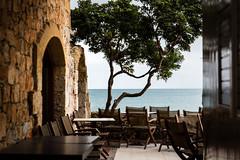 Κολυμβάρι, Crete, Greece (dawolf-) Tags: sunset shadow sea vacation tree stone wall coast cafe holidays greece seats crete