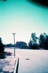 Round the Bend (Irene Stylianou) Tags: park trees film analog 35mm lomo lca lomography europe purple beck song cyprus lomolca analogue filmcamera nophotoshop analogphotography larnaca lomocamera songlyrics c41 filmphotography lomographic analogcamera minitar roundthebend sooc lomographyfilm filmdatabase irenestylianou lomochromepurplexr100400iso lomochromepurplexr100400iso35mm purplexr100400iso