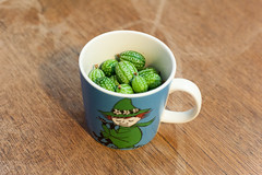 Day Two Hundred and Fourteen / Year Five. (evilibby) Tags: cucamelon moominmug moomins snufkin mug cup project365