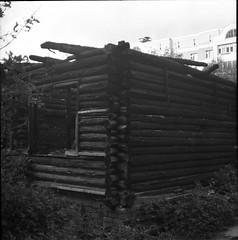 lpentacon028 (mike.chernov) Tags: pentacon six medium format square 6x6 color film people blackandwhitephotograph black white