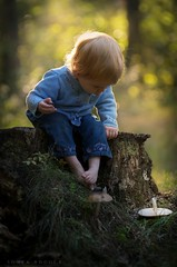 The Toadstool (Sonya Adcock Photography) Tags: girl child kid photography childphotography light evening glow warm family painterly portrait ray poetry poetic story nikon nikond700 nikkor nikkor105mmdc childhood fineart fineartphotography painting art sonyaadcockphotography baby musshroom stump toddler