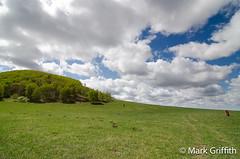 Big Sky Mongolia