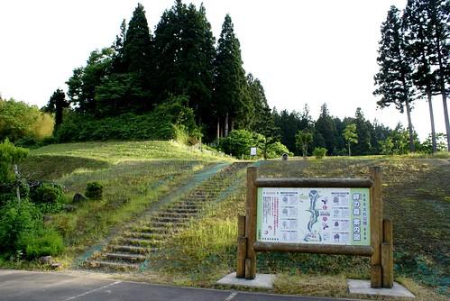 蓮花寺大杉公園