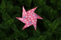 Happy Birthday Lada!!!! (Andrey Hechuev | Андрей Хечуев) Tags: stella canon eos star origami estrela stern estrella etoile zvezda розовый зелёный звезда оригами мята moduarorigami hpbd кэнон эос зірка зелений modularstar рожевий орігамі origamiunit andreyhechuev зіркаорігамі hpbdstar origamimodularstar hehuevandrey