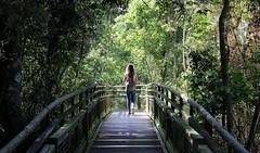 Caminos de Iguazu (Cesar Pinilla) Tags: iguazu trip walking portrait women jungle forest sun argentina brasil cataratas wild nature