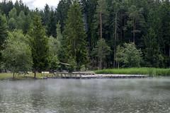 Alto Adige (Italy) - Siusi: laghetto di Fi  Vlser Weiher (Laghetto inferiore) (Massimo Battesini) Tags: nationalgeographic worldtrekker fujifilmxt1 fuji xt1 fujixt1 fujifilm finepix fujinon fujinonxf18135 fuji18135 fujifilmfujinonxf18135mmf3556rlmoiswr ago lake lac see acqua water eau agua dolomite dolomitas dolomites alpi alpes alps alpen fieallosciliar trentinoaltoadige italia it italy italie italien europa europe siusi laghettodifi vlserweiher laghettoinferiore pioggia alberi