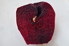 Home, sweet home... (JOAO DE BARROS) Tags: barros joo beets larva animal botany