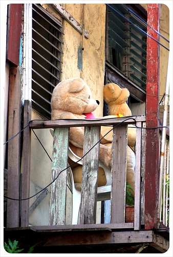 Casco Viejo Balcony with Teddy