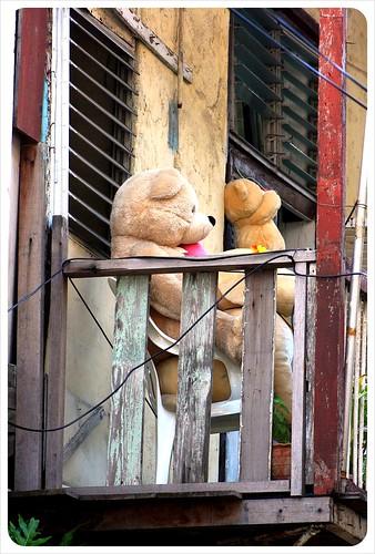 Casco Viejo Balcony with Teddy