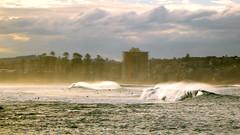(adelante.design) Tags: beach lumix surf waves sydney australia panasonic newsouthwales manlybeach ft2 ts2