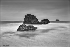 Rocking at North Berwick (Martin Steele.) Tags: longexposure sea beach canon mono coast interesting rocks 10 tide sigma stop rush filters northberwick hitech firthofforth 1770mm 450d thebassrock