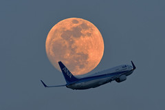 SUPER MOONLIGHT MILE 16 (bbw1150) Tags: moon haneda hnd b737 rjtt supermoon