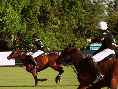 117th Hurlingham Club Open Championship, Argentina / 117 Abierto de Hurlingham YPF () Tags: vacation horse holiday game latinamerica southamerica argentina argentine leather caballo cheval nikon candid pony paparazzi 70300mm polo rtw pferd vacanze tack roundtheworld sudamerica polopony amricalatina globetrotter southernhemisphere zonasul ceffyl ypf polomatch  poloclub argentini argentinien  hurlingham amricadelsur polofield sdamerika hurlinghamclub leatherboots worldtraveler  ariannin repblicaargentina  etiquetanegra chukkas argentinidad pologame poloteam d700   nikond700 chapauno  chukkers  ellerstina abiertodehurlingham      117thhurlinghamopen hurlinghamopen ellerstinaetiquetanegra chukers    ellerstinanegra