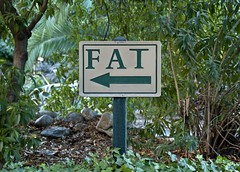 Segregation (Russ Allison Loar) Tags: sign big fat fastfood humor diet weight weightwatchers obesity obese overweight pudgy nutrition fatpeople segregation bmi obesityepidemic overeating overeater bodymass bodymassindex