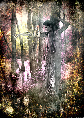 LARRY CARLSON, Swamp Goddess 4, digital photography, 2010.