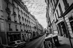 DSC_1016 (praneeth87) Tags: trees paris france green art lines buildings photography lights blackwhite amazing patterns eiffeltower