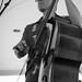 Roy Sludge Trio @ Lexington Battle Green BBQ Festival 5.17.2014