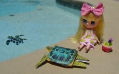 BaD - May 23 - Turtles