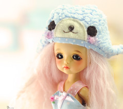 A new Cookie at home ! (* FLEUR DE LYS *) Tags: yellow cookie latidoll lati