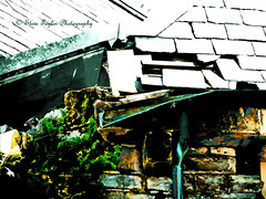 Gutted (Steve Taylor (Photography)) Tags: city roof newzealand christchurch fern brick heritage broken earthquake canterbury nz quake southisland cbd gutter slate smashed bent damaged spouting downpipe